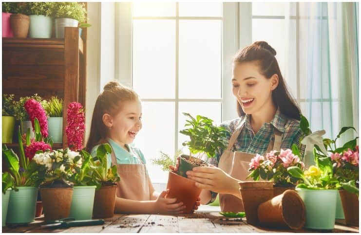8 Things to Improve Around the House