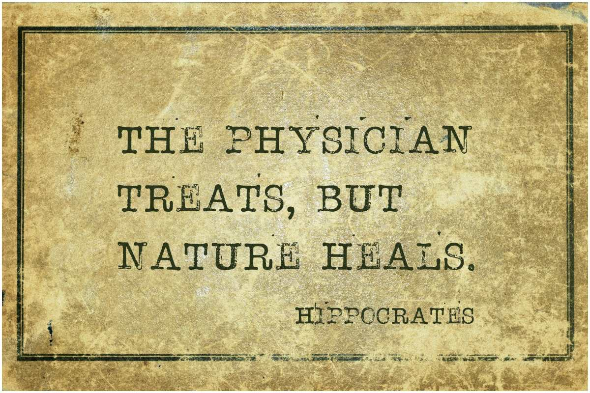 Greek physician Hippocrates quote
