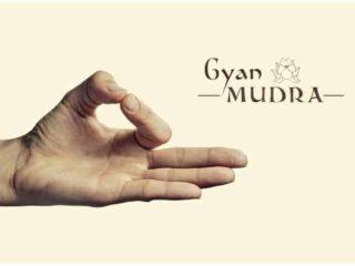 Jnana Mudra & Gyan Mudra – The Wisdom Gesture