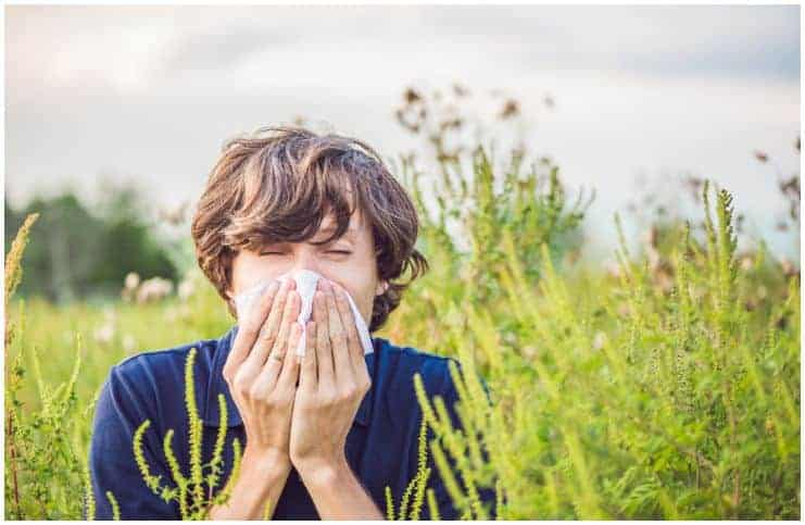 Spring Is Here, And Allergies Are On The Way