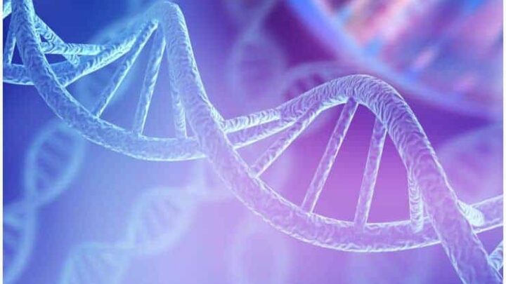 What is 12 Strand DNA Activation? – Complete Guide
