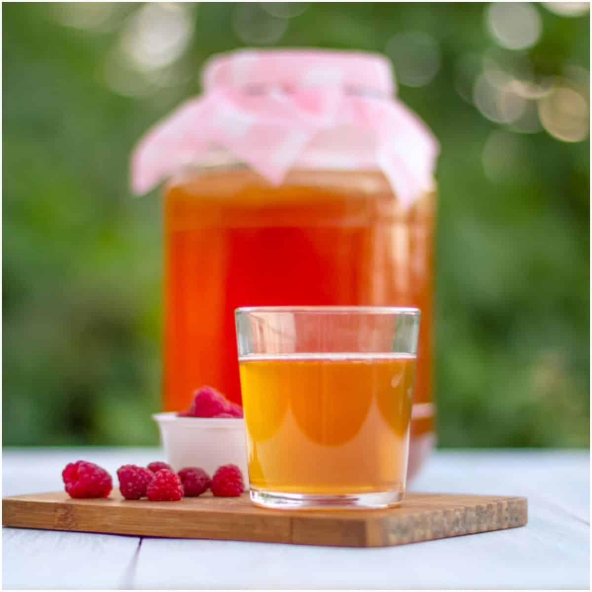 Kombucha Tea side effects