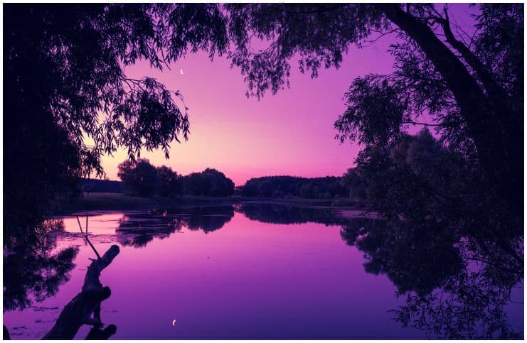 Spiritual Meaning ofViolet