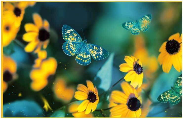 Spiritual Meaning of Yellow