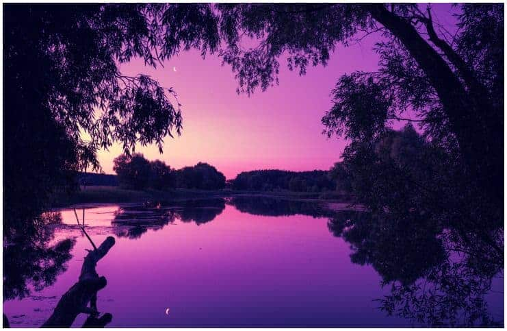 Spiritual Meaning of the Color Purple