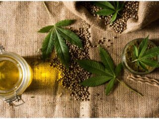 36 Interesting Facts You Didn't Know About Hemp History, Benefits, And Uses