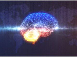 Sara Lazar - How Meditation Can Reshape Our Brains TED talk