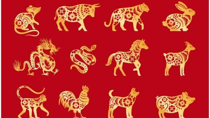 Chinese Zodiac – 12 Animal Signs With Their Meanings