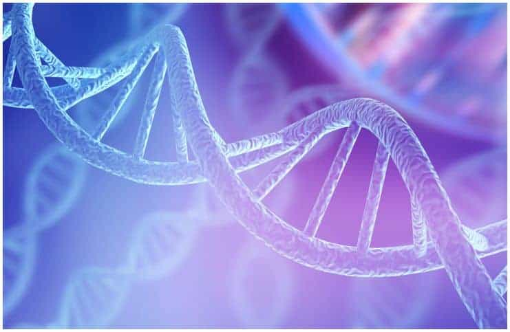 DNA Testing What It Promises Now and in the Future