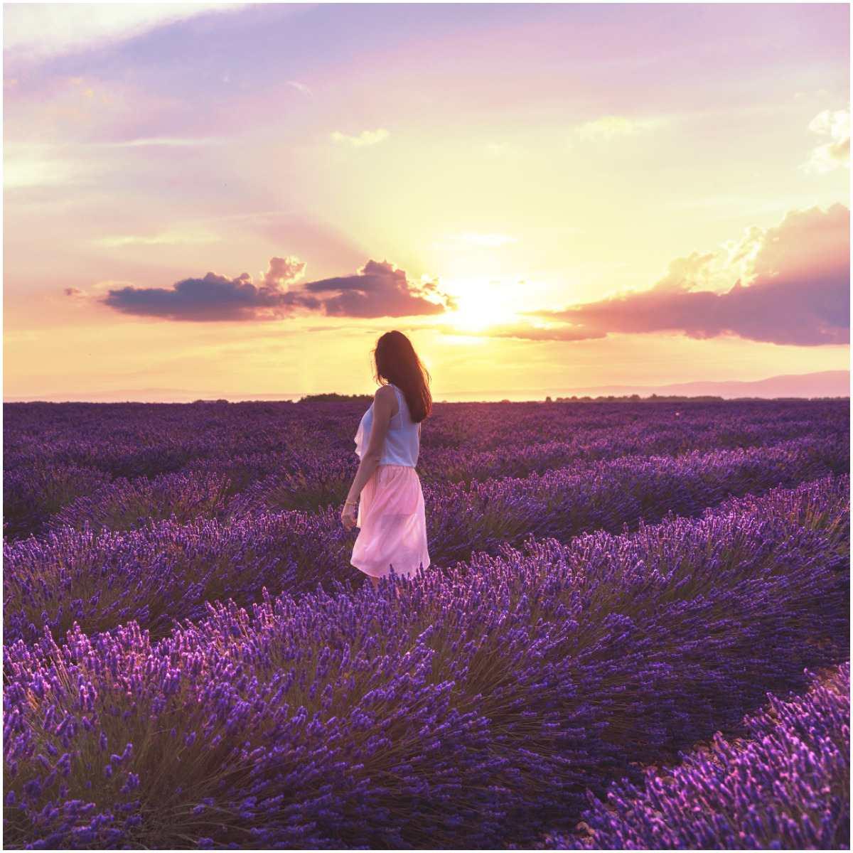 Lavender oil for meditation