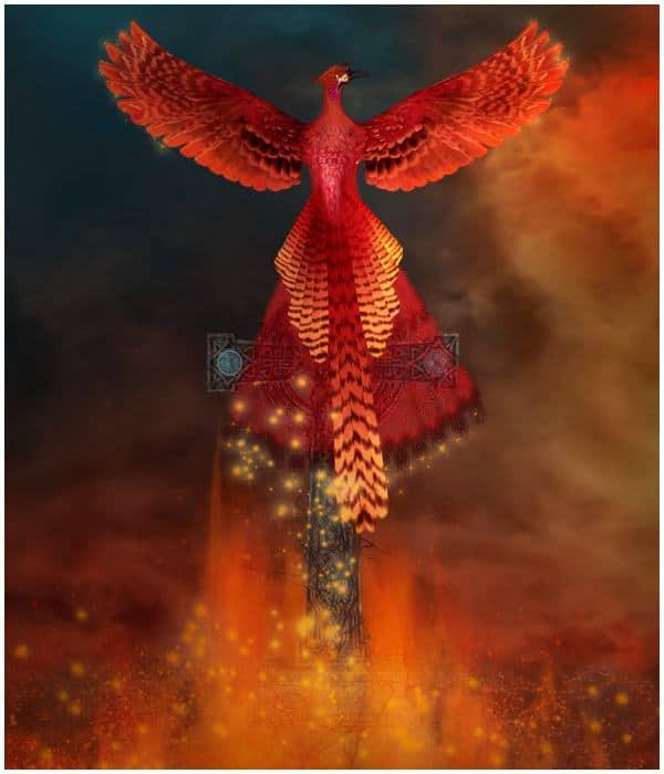 Mythology &Phoenix Bird