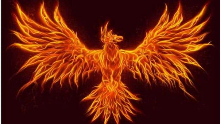 Spiritual Meaning of The Phoenix Bird + Legends & Myths