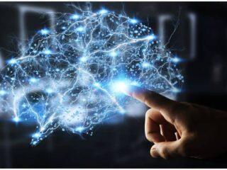 Efficiency Of Brain Training - Increase Brain Power
