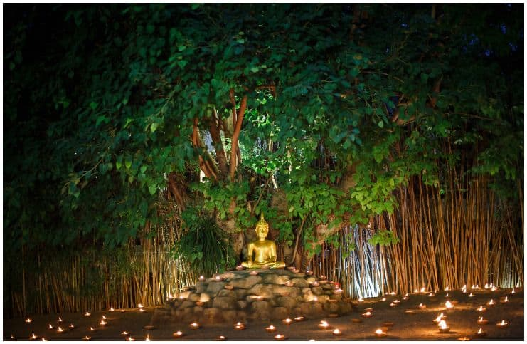 The Bodhi Tree symbol meaning