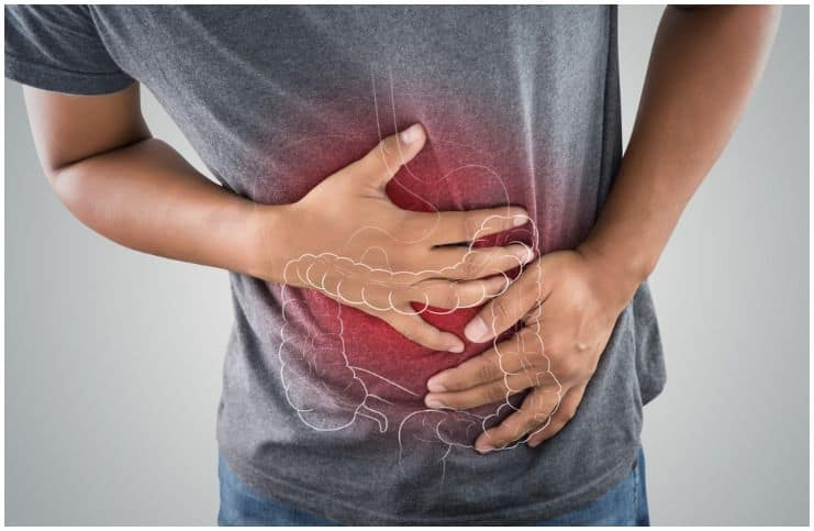 stomach and large intestine man