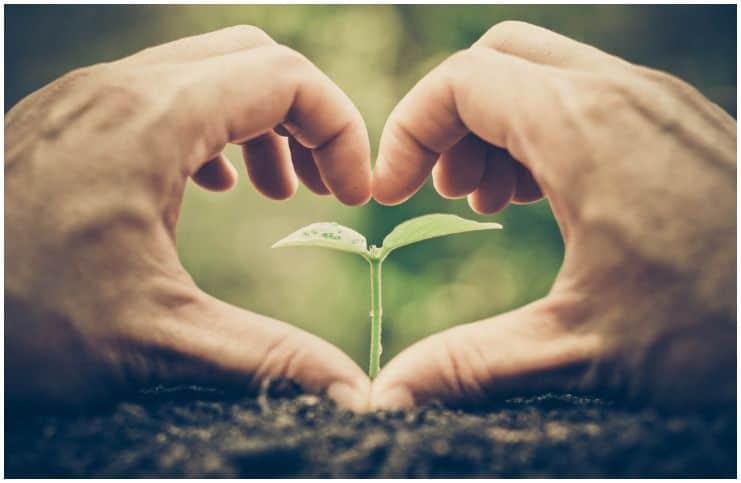 Plant Empath