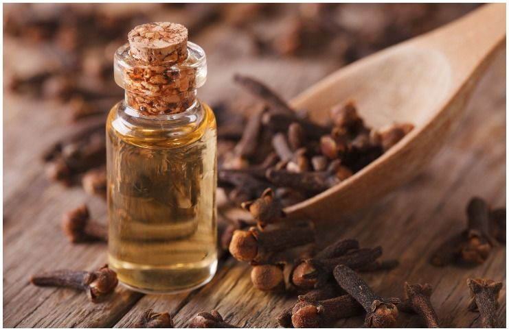 Clove essential oil for protection