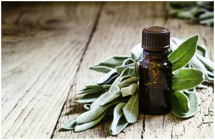 Sage essential oil for protection