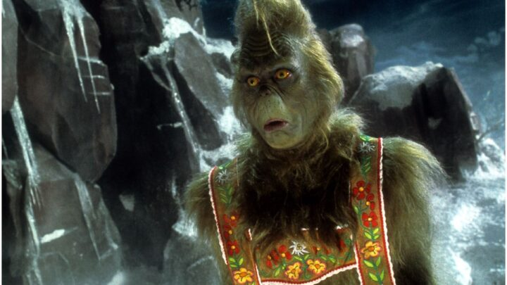 33 Quotes from How the Grinch Stole Christmas!