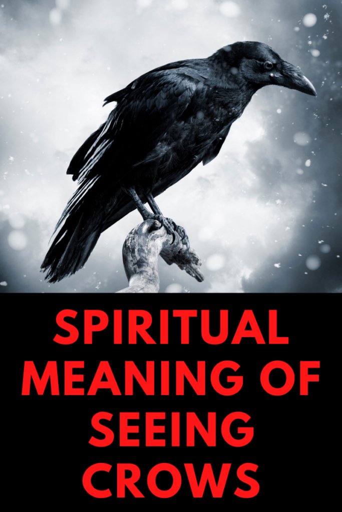 Spiritual Meaning of Seeing Crows
